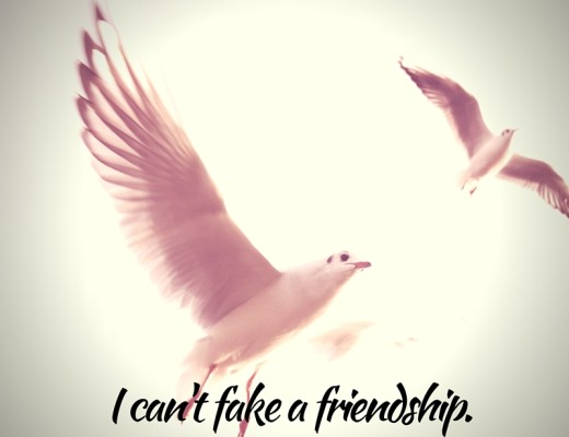 I can't fake a friendship.